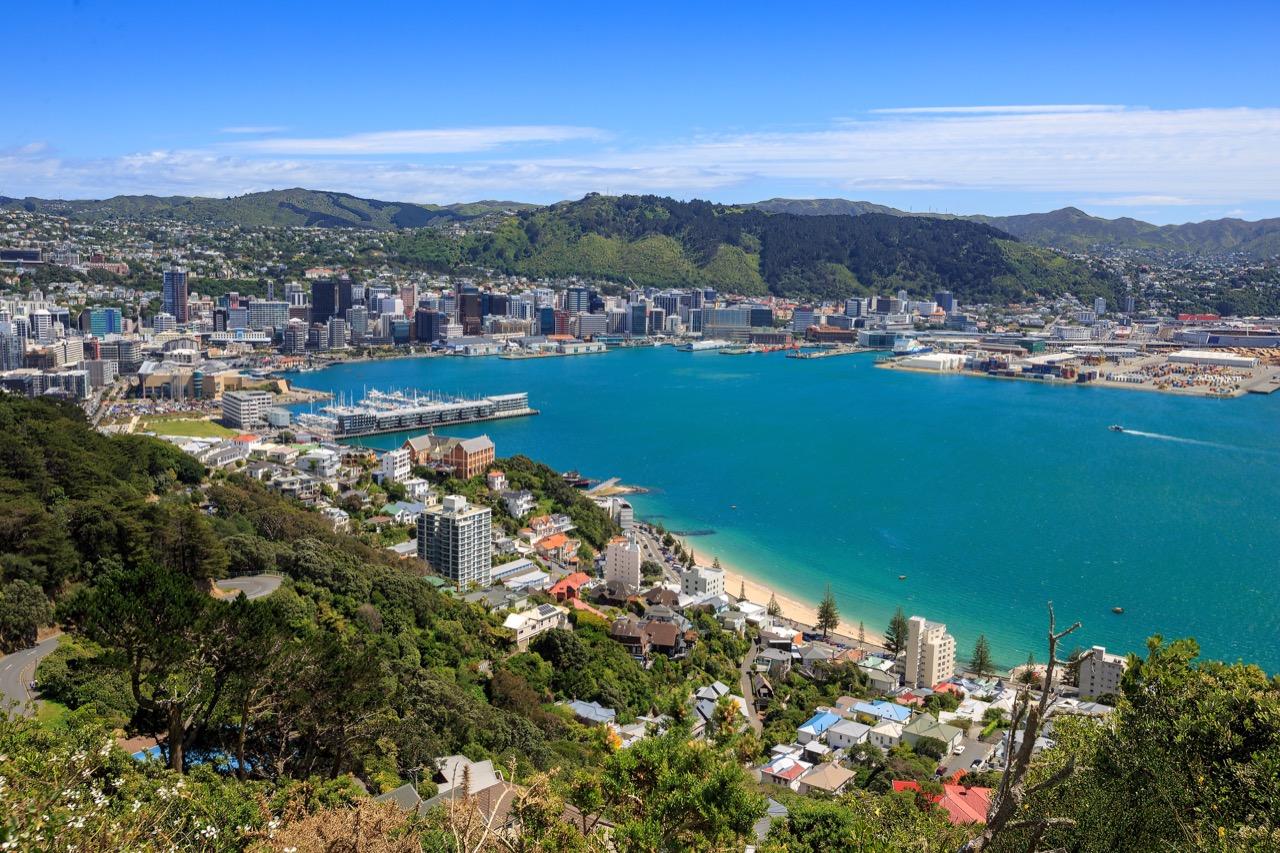 Okolice przepięknego Wellington toTolkienowskie Śródziemie.