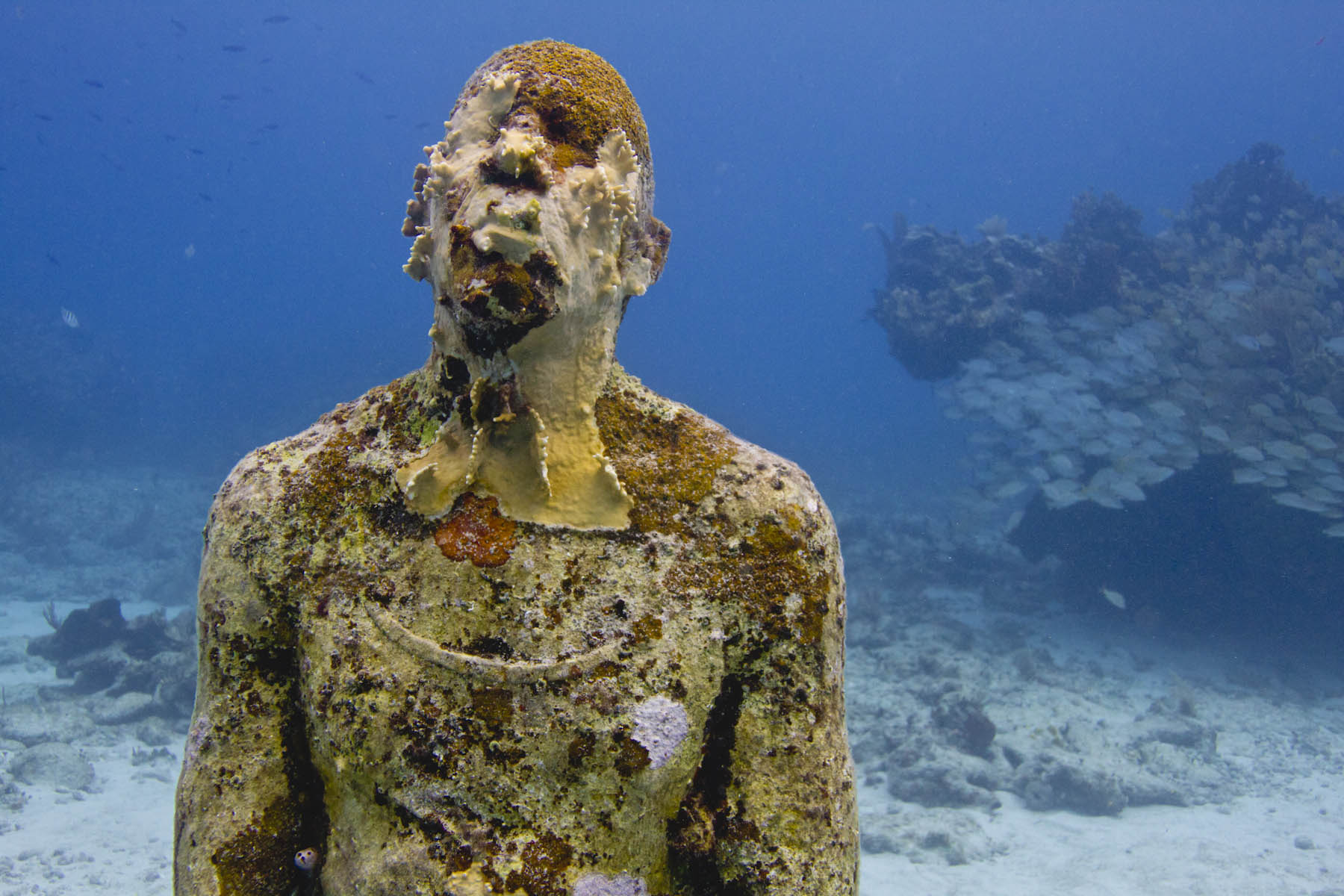 Trochęprzerażające, aleprzecież sztuka rządzi się swoimi prawami... / Foto: MUSA