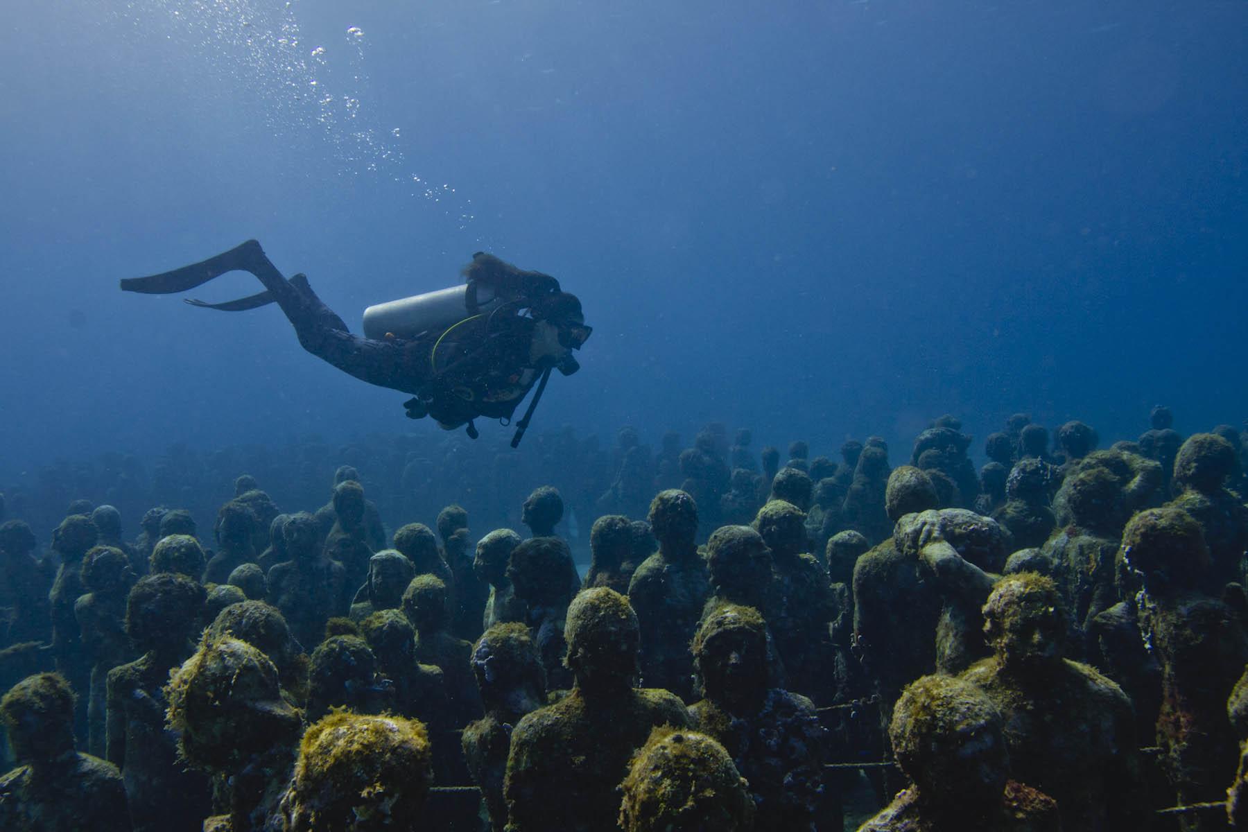 Podmorski tłum. / Foto: MUSA